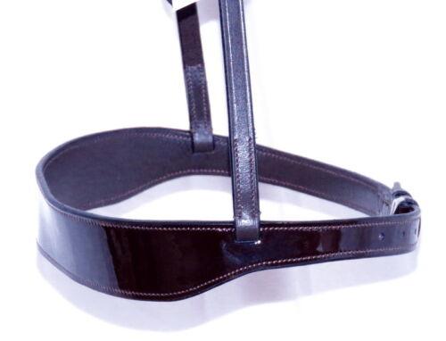 FSS traditionnel plat 4 cm Hunter montrer Patent Cut Away Muserolle cavesson Twin Buck