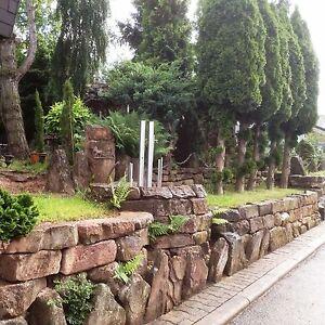 Charming Das Bild Wird Geladen Buntsandstein Natursteinmauer Trockenmauer Sichtschutz  Garten Mauer Stuetzmauer