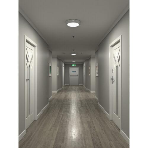 LED Bulkhead Light Emergency Standard Microwave Options Round Ceiling Wall IP65