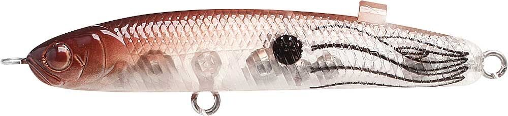 Lucky Craft Japon Wander 65 Fantasy Torche 50211505 Candy Belly Pinky Sardine