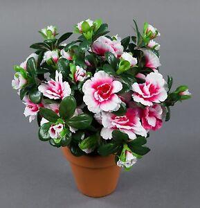 azalee 24cm pink creme im topf lm kunstpflanzen k nstliche blumen kunstblumen ebay. Black Bedroom Furniture Sets. Home Design Ideas