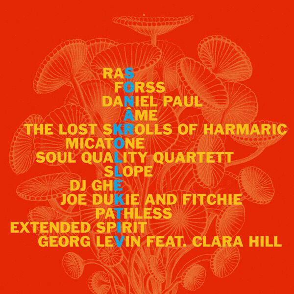 Sonar Kollektiv 2 : RAS Micatone Pathless Georg Levin Daniel Paul Slope DJ Ghe N