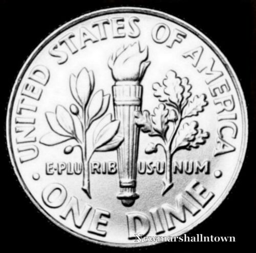 1979 P Roosevelt Uncirculated Dime ~ Raw Coin from Bank Roll