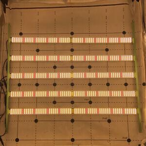 600 Watts Qbar Top Bin Samsung Lm301h Cree 660nm Reds