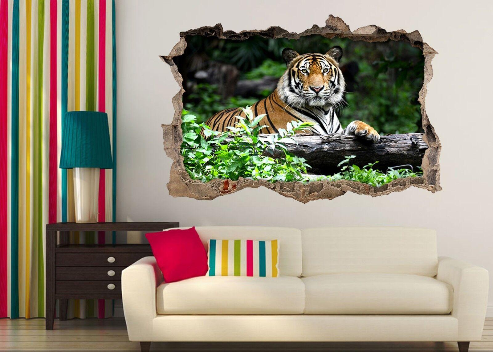 3D Ruhender Tiger 3 Mauer Murals Mauer Aufklebe Decal Durchbruch AJ WALLPAPER DE