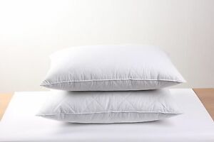 2 pack 100% Egyptian Cotton Goose Feather Pillows Filled 600TC Queen Size White