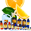 3ml-Essential-Oils-Many-Different-Oils-To-Choose-From-Buy-3-Get-1-Free thumbnail 78