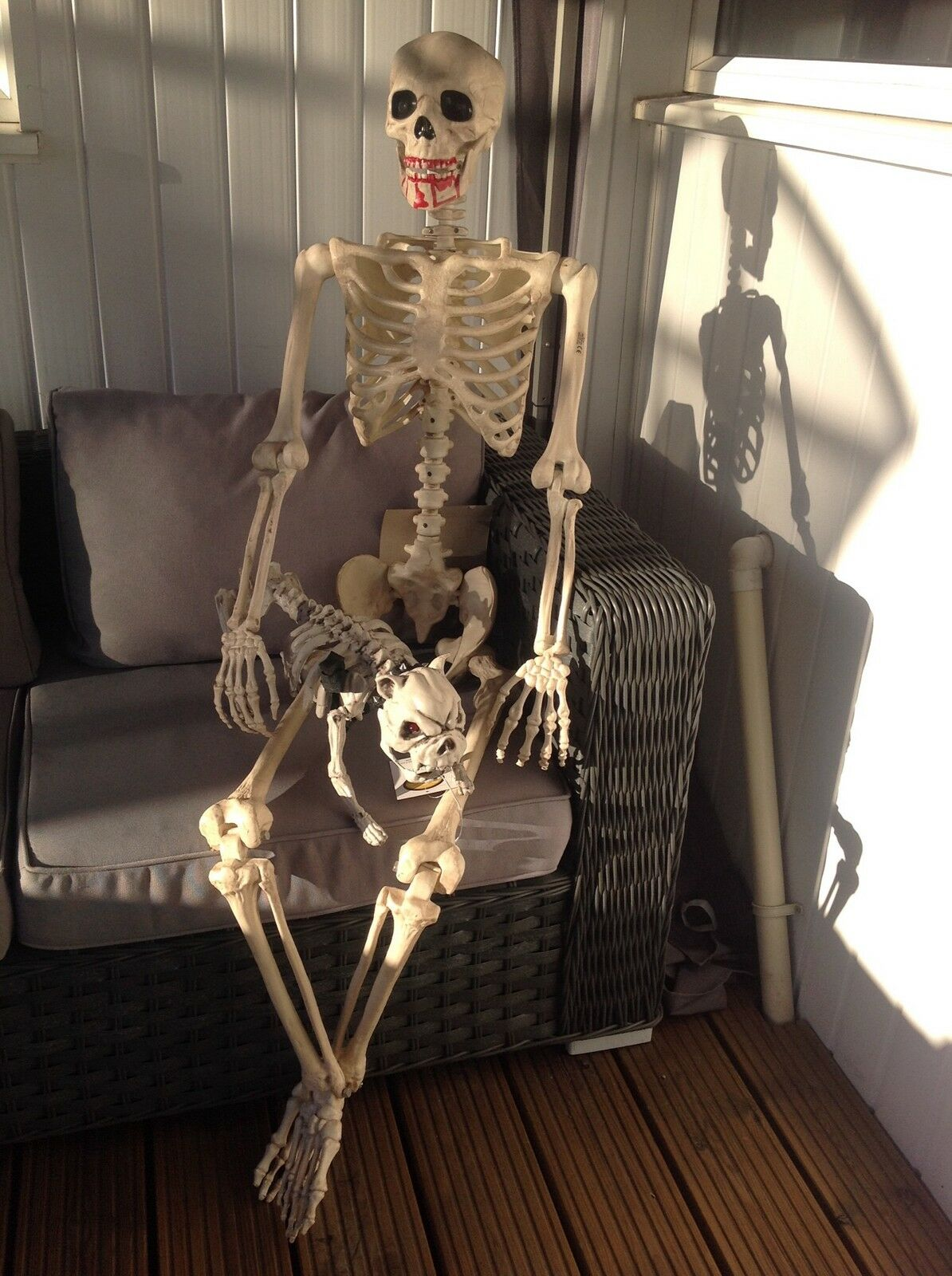 Halloween bundle 5ft led skeleton  & dog great prop