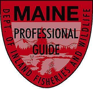 Maine Professional Wilderness Guide Game Warden Park Ranger Vinyl decal sticker