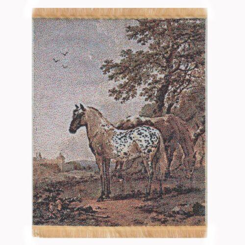 tapsr 03 Maison de poupées miniature grande tapisserie avec chevaux