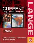 CURRENT Diagnosis & Treatment of Pain by Jamie H. Von Roenn, Michael Preodor, Judith A. Paice (Paperback, 2006)