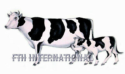 6 sizes to choose from A12 ~ Black /& White Holstein Cow Ceramic Decals Dairy