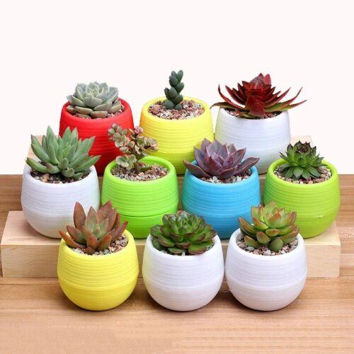 Round Flower Pot Succulent Plant Planters For Home Garden Decoration
