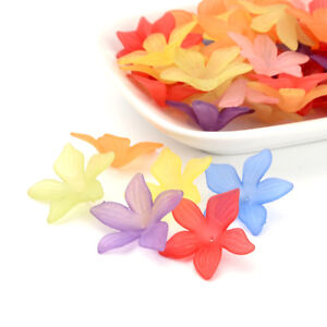 50pcs-Colorful-Transparent-Acrylic-Big-Flower-Beads-Frosted-Loose-Bead-Caps-27mm