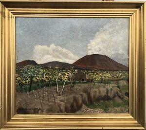 JULIUS-ANDERSEN-1920-LANDSCHAFT-IM-SUDEN-SPANIEN-ESPANA-43-X-49-CM