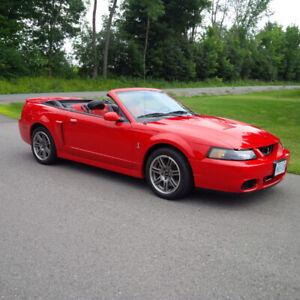 2003 Mustang SVT Cobra Convertible 10th Anniversary
