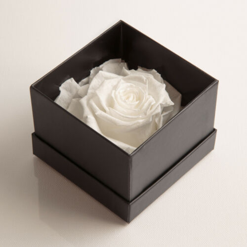 Rosenbox I Love You Infinity Rose 3 Jahre haltbar Ich liebe Dich Geschenk Frauen