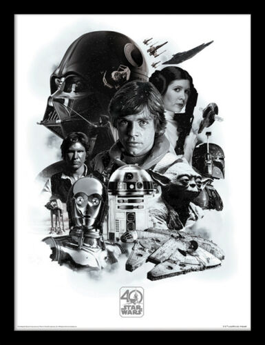 Star Wars 40th Anniversary Montage Framed 30 x 40 Official Print