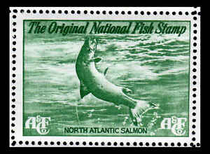 c4e085ea1103f Image is loading National-Fish-Stamp-Green-Salmon-Abercrombie-amp-Fitch-