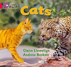 Collins Big Cat: Cats: Band 01B/Pink B by Claire Llewellyn (Paperback, 2012)