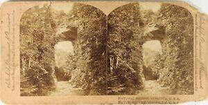 USA Virginia Pont Naturale, Foto Stereo Vintage Albumina Danneggiata