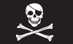 """NEW 6 ft Black Skull Flag 1//4/"""" Whip Pole /& Mounting Bolt ATV Rhino UTV"""
