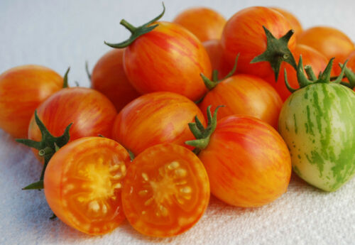 seeds Sunrise Bumblebee Tomato 10