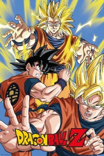 DragonBall Z Goku 70 61 x 91.5cm Poster Expert Packaging