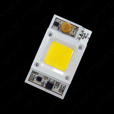 High Power Led Bridgelux 50w/100w COB Chip Integrated Smart IC Driver 110V/220V