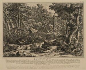 Nach-Joh-RIDINGER-1698-Ins-Netz-gefallene-Hirsche-19-Jh-Reproduktion
