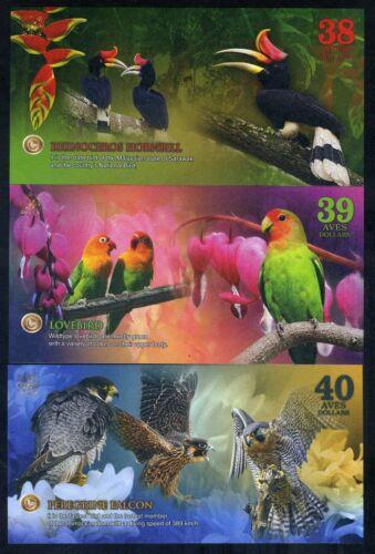 Lovebirds Falcon Hornbill SET Atlantic Forest 38;39;40 Aves Dollars 2018