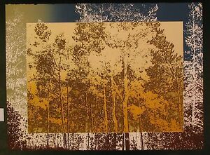 Original-Etching-by-Paula-Crane-Afterglow