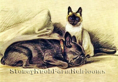 French Bulldog /& Siamese Cat ~ Dogs Cats ~ DIY Counted Cross Stitch Pattern