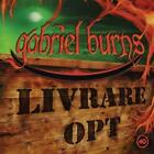 40/Livrare opt von Gabriel Burns (2013)