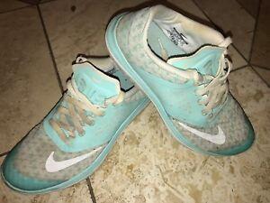 df8b01c59b9 Nike FS Lite Run 2 Premium Running Shoes 704881-302 Womens Size US 6 ...
