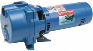 Details about New GOULDS PUMPS GT20 IRRI-GATOR Self-Priming Single Phase  Centrifugal Pump