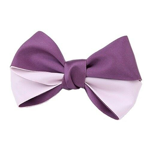 Choice of Colour Two-Tone Layered Satin Bowknot Bow Hair Clip Barrette