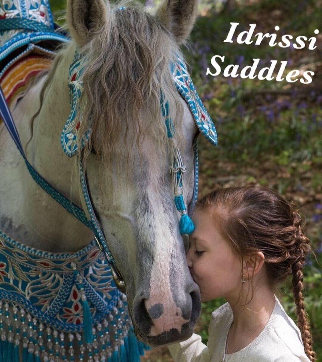 Harnachement saddles selle tborida  handcraft moroccanhandmade royal saddles  sin mínimo