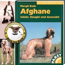 Afghane, Saluki, Sloughi und Azawakh; Afghanischer Windhund (Ratgeber, Handbuch)