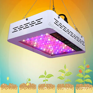 Details about mars hydro 300 led grow light 5w panel full spectrum