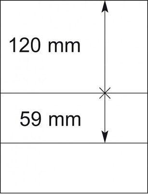 Den Teint Zu Erhalten Lindner 802206p T-blanko-blätter Dass Haare Vergrau Werden Und Helfen 10er-packung Verhindern