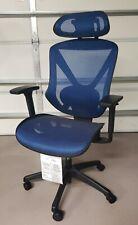 Flexfit Ergonomic Mesh Task Chair Blue