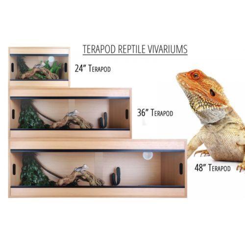 Terapod Deep 48 Nero Terrario Rettile Alloggiamento Alloggiamento Alloggiamento Barbuto Dragon Lizard SERBATOIO Viv c79b7e