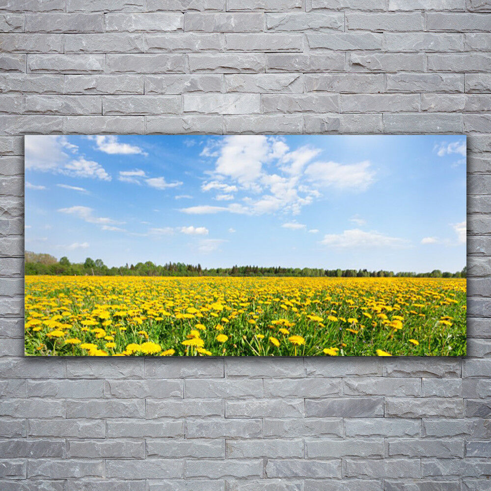 Impression sur verre Wall Art 120x60 Photo Image Dandelion Meadow Paysage