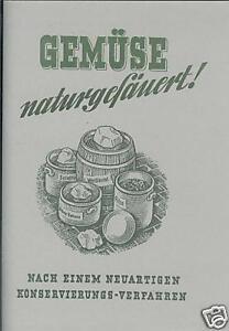Gemuese-naturgesaeuert-neuartiges-Konservierungsverfahren-Einlegen-von-Gemuese