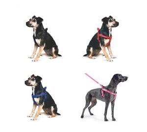 Cachorro-de-perro-de-nylon-acolchada-Reflectante-Costura-harnessancol