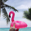 5Pcs Summer Bird Cup Drink Holders Swimming Pool Party Holder Coasters Float