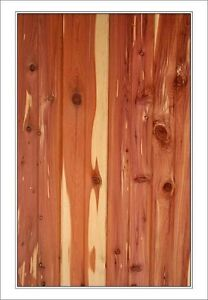 1x6 Inch Native Red Cedar Boxcar Siding T G Or Shiplap