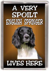 English-Springer-Fridge-Magnet-No-2-034-A-VERY-SPOILT-LIVES-HERE-034-by-Starprint