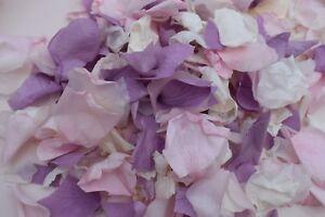 Violet-Rose-amp-Ivoire-Rose-Petale-Biodegradable-Confettis-Flutter-Vintage-Naturel-EC